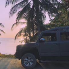 파라다이스 비치 여행 사진