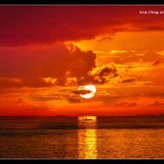 石海溫泉用戶圖片