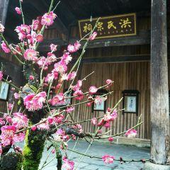 Flower-selling Fish-shaped Village User Photo