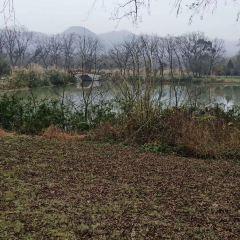 麗水九龍濕地用戶圖片