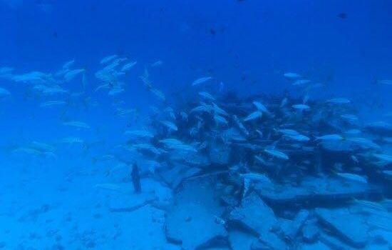 아틀란티스 괌 잠수정관광1