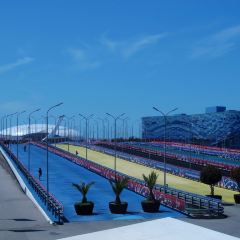 Fisht Olympic Stadium User Photo