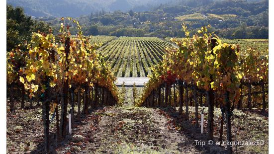 de Grendel Winery