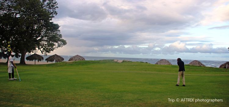 Playa Dorada Golf1