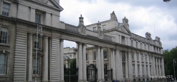 Leinster House2