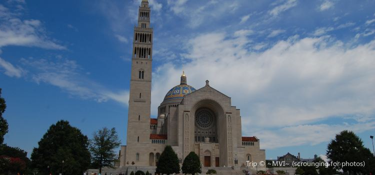 Basilica of the National Shrine of the Immaculate Conception1