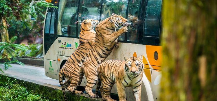 백봉협 야생 동물원