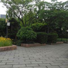 Douxiang Park User Photo