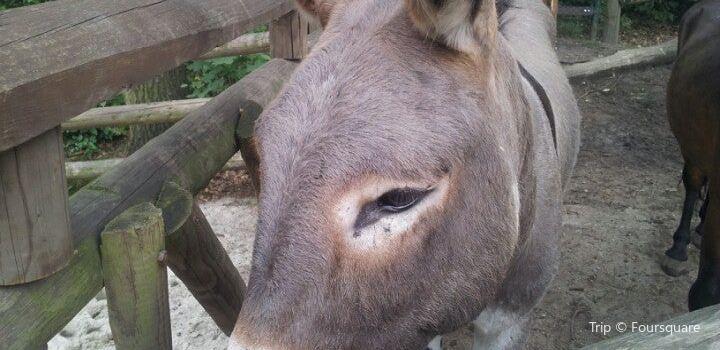 Zoo Ostrava3
