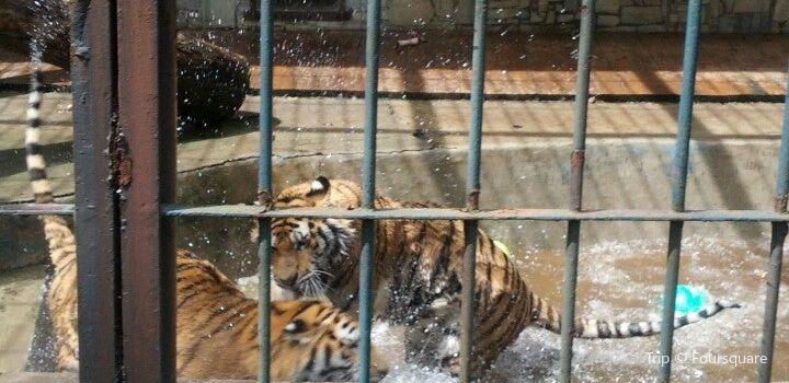 Zoo Ostrava2