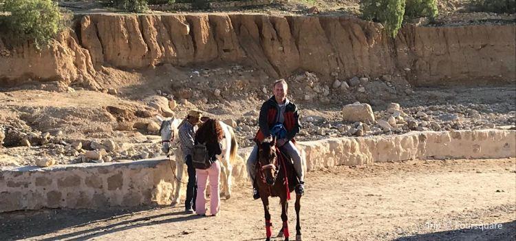 Petra Museum1