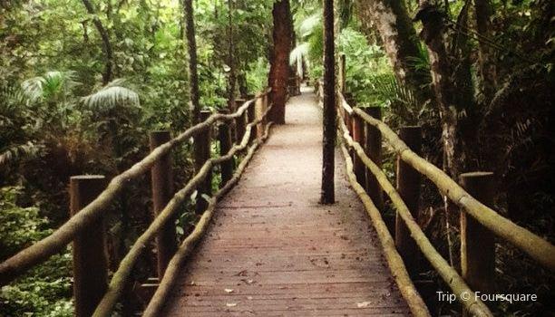 Jardim Botanico de Sao Paulo1
