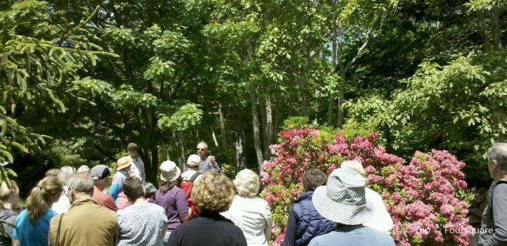 Polly Hill Arboretum3