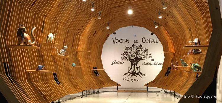 Voces de Copal3