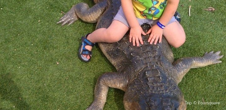Canberra Reptile Zoo1