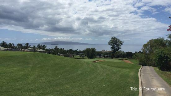 Wailea Old Blue Course