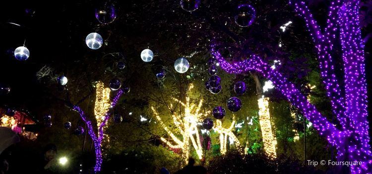 LA Zoo Lights1