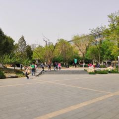 Zaolin Park (East Gate) User Photo