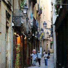 Placa de Sant Jaume User Photo