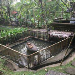 Bebek Tepi Sawah User Photo