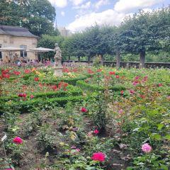 rosengarten User Photo