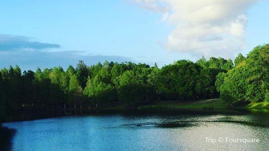 Greenwood Urban Wetlands