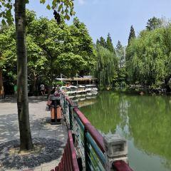 Yonghe Park User Photo