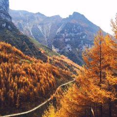 雪寶山國家森林公園用戶圖片