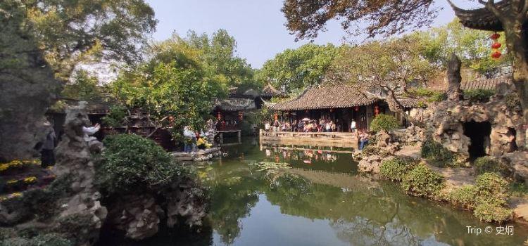 Tuisi Garden