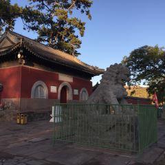 Shuxiangsi User Photo