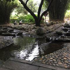 府南河活水公園のユーザー投稿写真