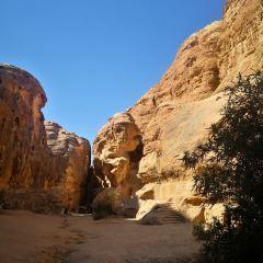 Little Petra User Photo