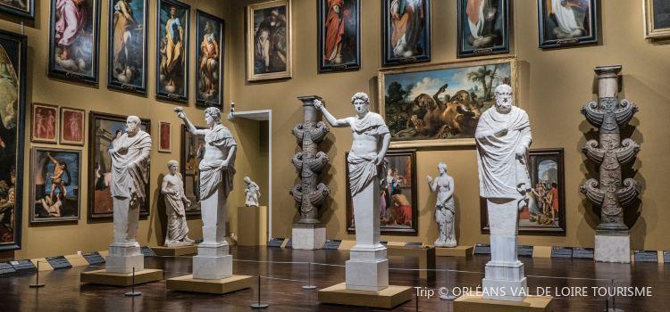 Musee des Beaux-Arts2