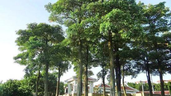 Huaqiao Park