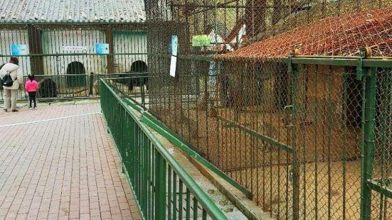 Pu Zoo