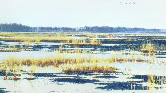 莫莫格國家級自然保護區