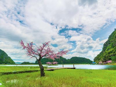 Jingbian Cauliflower Miao Ethnic Ecology Village