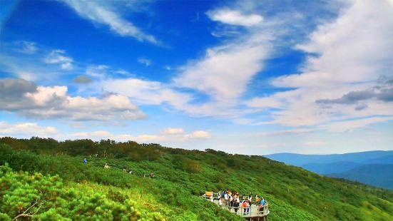 펑황산 국가삼림공원
