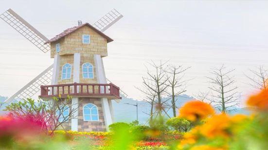 Alice in Wonderland Flower Sea