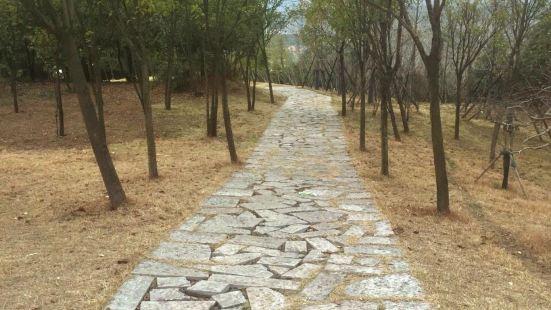 株洲天臺山公園