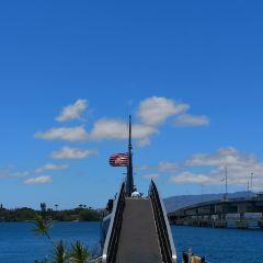 珍珠港太平洋航空博物館用戶圖片