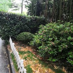 Huaixin Park User Photo