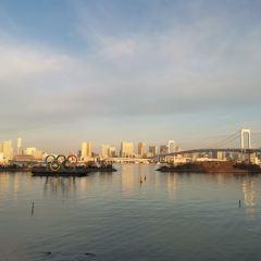 Odaiba User Photo
