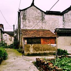 千燈古鎮用戶圖片
