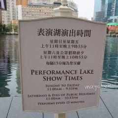 表演湖用戶圖片