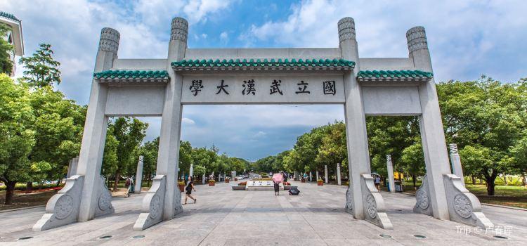 武漢大學1