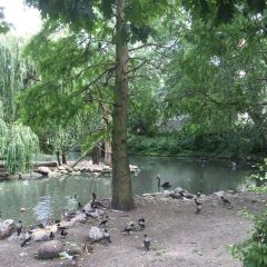 Tierpark User Photo