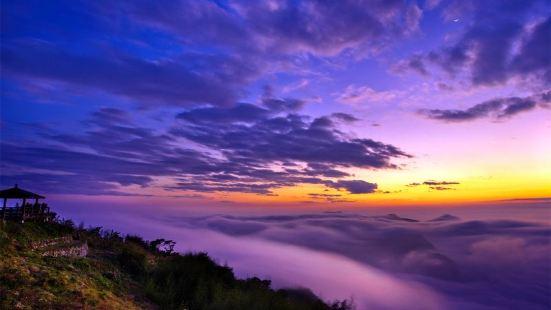 阿里山隙頂雲海