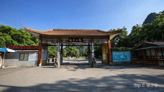 Longtan Park