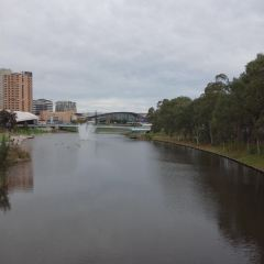 Torrens River User Photo